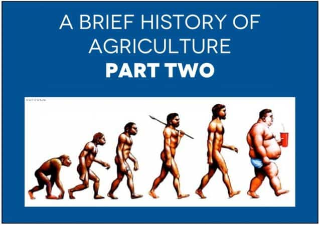 A Brief History of Agriculture, Part II – The Birth of Industrial Agriculture
