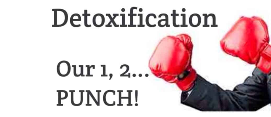 Detoxification – We give it a 1 – 2 – PUNCH!