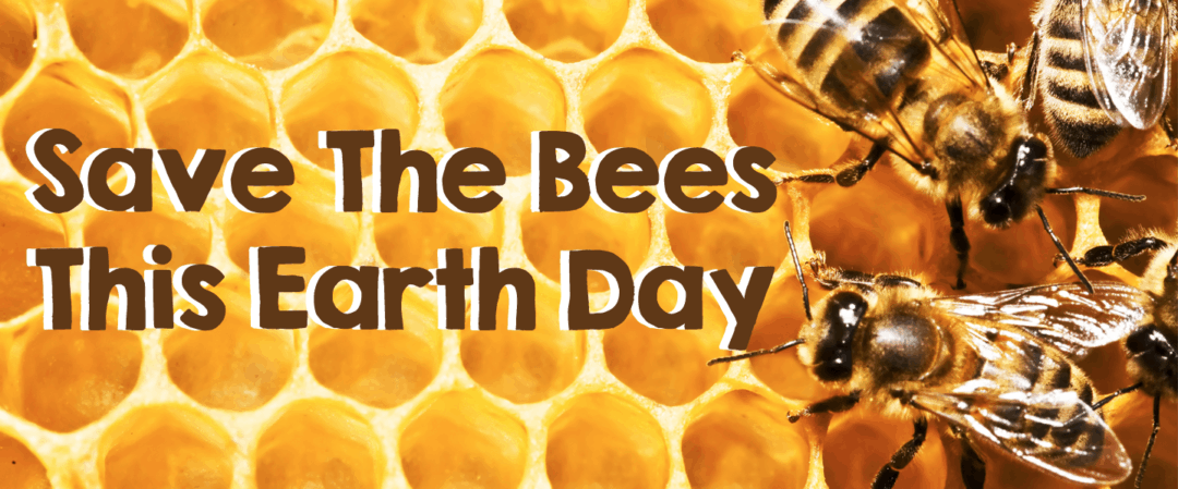 Save The Bees This Earth Day