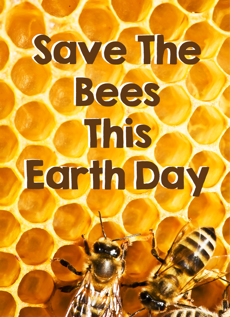 Save the bees #earthday #caltonnutrition