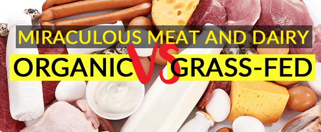 Miraculous Meat and Dairy: Organic vs Grass Fed