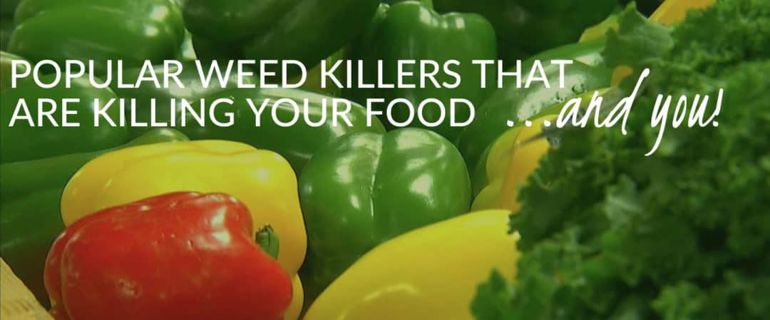 Popular Weed Killers That are Killing Your Food (and YOU!)