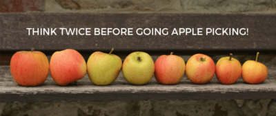 Think Twice Before Going Apple Picking!