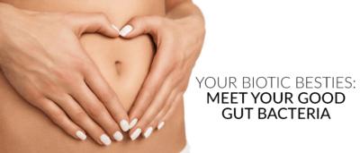 Your Biotic Besties: Meet your Good Gut Bacteria