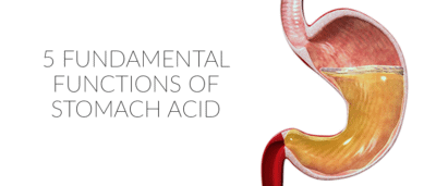 5 Fundamental Functions of Stomach Acid (Churn, Baby, Churn)