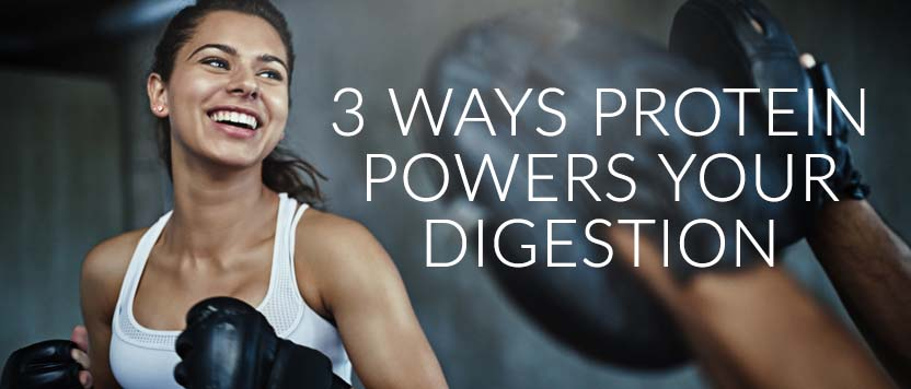 3 Ways Protein Powers Your Digestion